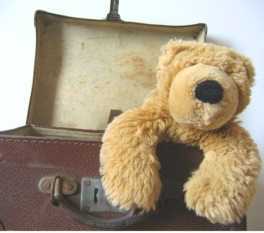 teddy bear inside a suitcase